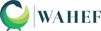 wahef-trasnaprent